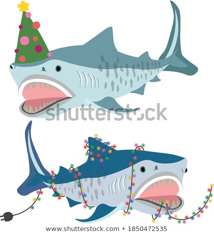 Set of Christmas trees in a marine style isolated on a white background. Sketch of festive poster, p Stock photo © Lady-Luck
