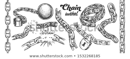Steel Chain Security Accessory Monochrome Vector Stock photo © pikepicture