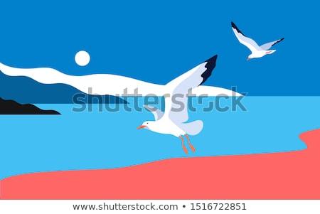 Sea Gull in Air Stock photo © cienpies