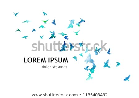 cartoon · Blauw · vogel · zingen · gelukkig · nota - stockfoto © pathakdesigner