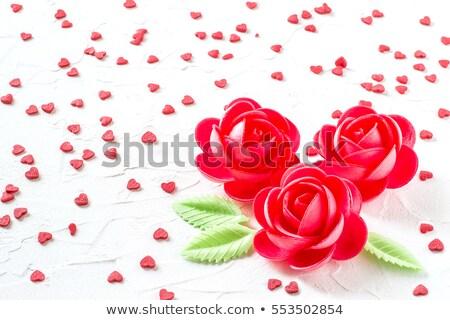 Hóstia rosas branco flor rosa Foto stock © zkruger