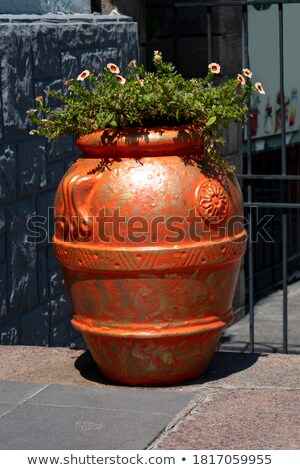 the big vases stock photo © ciklamen