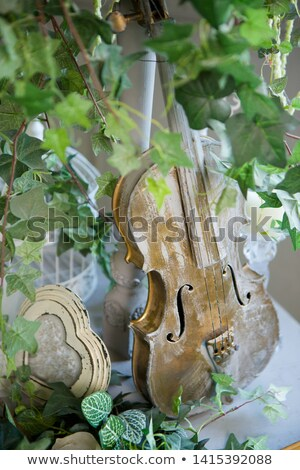 Still-life from a violin and other instruments Stock photo © pzaxe