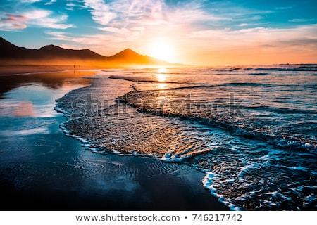 pôr · do · sol · oceano · noite · norte · Califórnia · ondas - foto stock © marcopolo9442