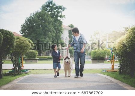 Boğuk baba oğul beyaz köpek grup kurt Stok fotoğraf © silense