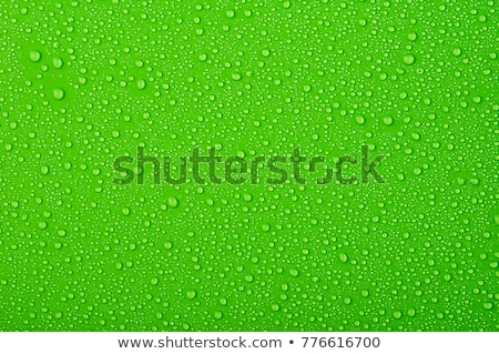 Water drop on green background Stock photo © ajn