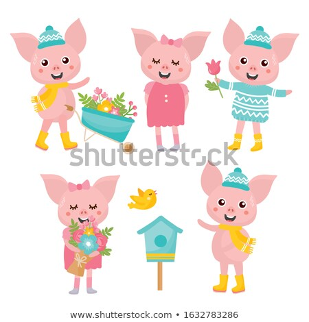Piglet And Bouquet Stock photo © derocz