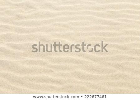 Harmonisch patroon strand zon abstract natuur Stockfoto © meinzahn