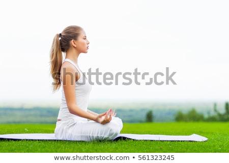 ioga · cobra · pose · mulher · grama · verde · parque - foto stock © hasloo