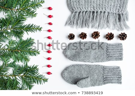 Set of winter wool accessories on wood table Stock photo © nalinratphi