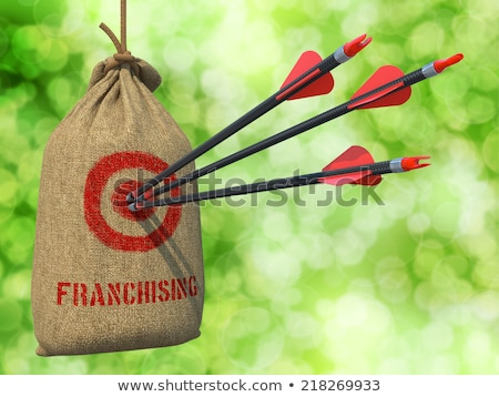 Franchising - Arrows Hit in Red Mark Target. Stock photo © tashatuvango