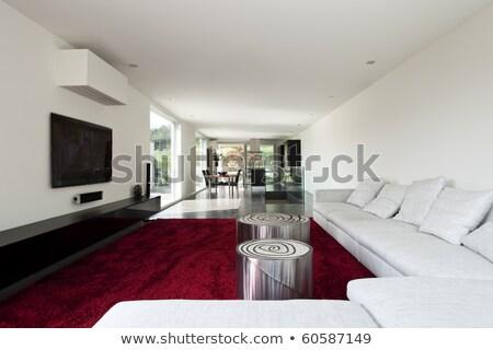 Livingroom of New House Stock photo © JFJacobsz