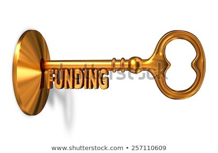 funding   golden key is inserted into the keyhole stock photo © tashatuvango