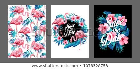 Pink hibiscus invitation border stock photo irisangel 576323 add to lightbox download comp filmwisefo