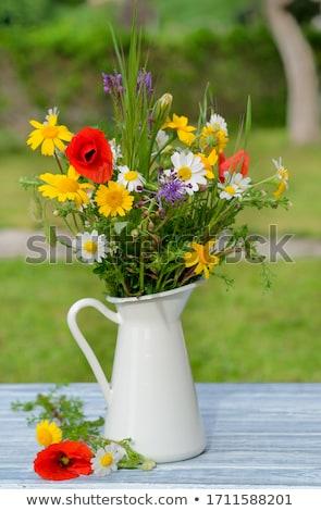 Vadvirág virágcsokor vadvirágok különböző nagy napraforgó Stock fotó © zhekos