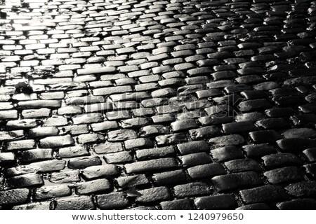 wet cobblestones reflect the sun Stock photo © meinzahn