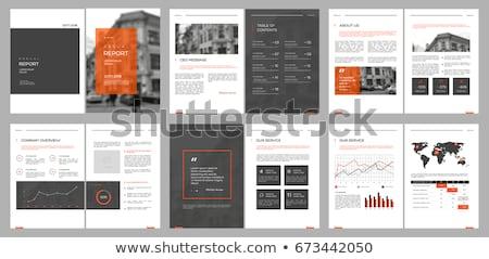 Orange Annual report template vector illustration Stock photo © ganpanjanee