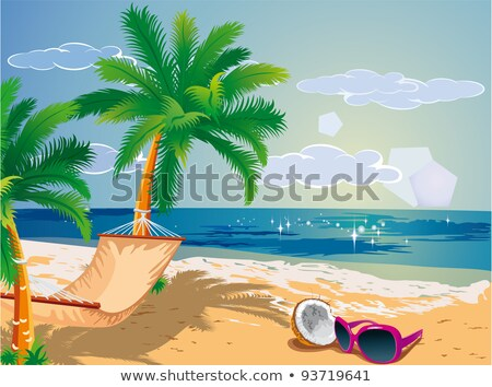 Jelenet függőágy kókusz fa illusztráció tengerpart Stock fotó © bluering