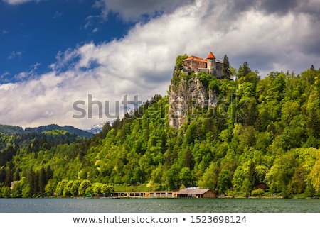 famous castle on the bled lake stock photo © capturelight