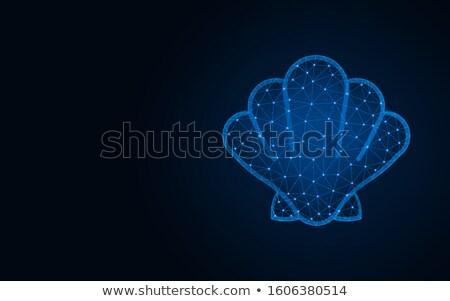 mar · concha · logotipo · design · de · logotipo · 10 · abstrato - foto stock © sdcrea