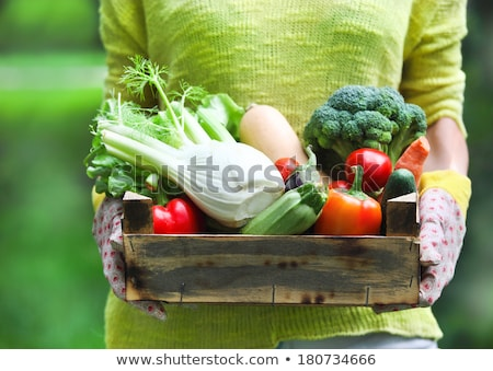 Woman wearing gloves with fresh vegetables in the box in her han stock photo © Yatsenko