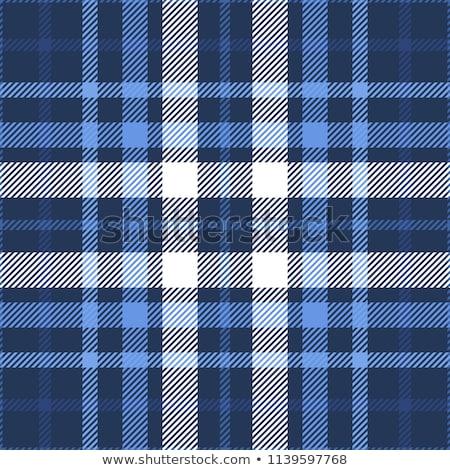 Checked fabric pattern  Stock photo © szefei