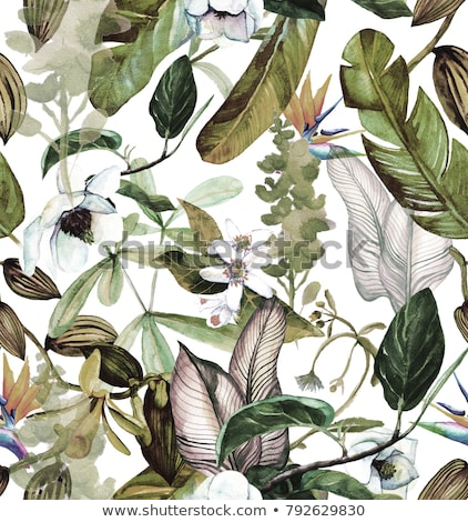 Tropical design with vanilla palm leaves and plants on blue back Stock photo © BlueLela