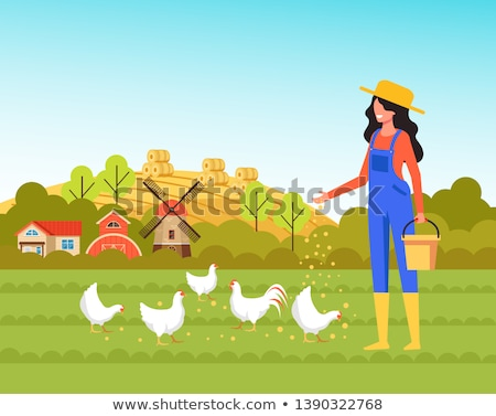 Woman Feeding Poultry In Farmyard Stock photo © monkey_business