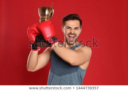 Felice urlando giovani boxer immagine Foto d'archivio © deandrobot