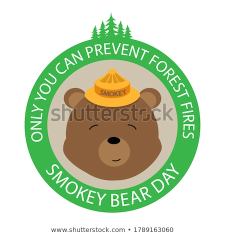 Forest Protection Bear Day Stock photo © barsrsind