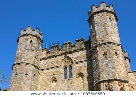 csata · apátság · Sussex · Anglia · fal · kert - stock fotó © smartin69
