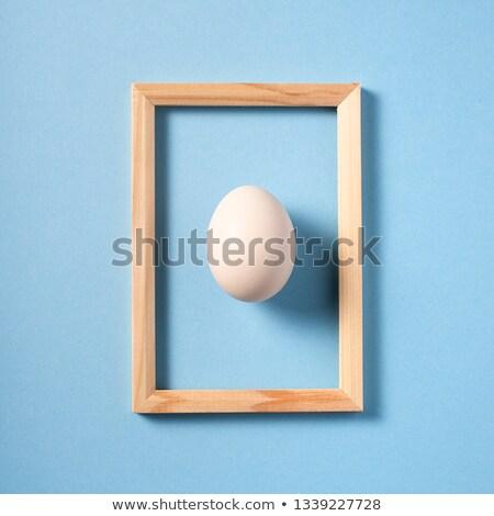 boiled egg,studio shot Stock photo © M-studio