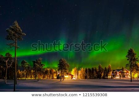 tél · Finnország · csodálatos · napos · hideg · nap - stock fotó © Estea