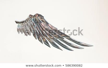 Repülés robot szárnyak illusztráció háttér repülőgép Stock fotó © bluering
