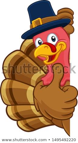 Hálaadás Törökország madár visel zarándok kalap Stock fotó © hittoon