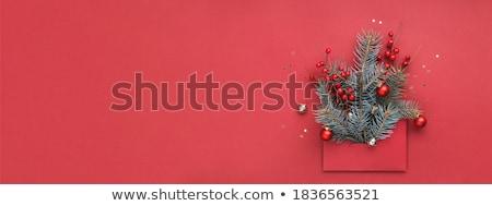 abstract · Rood · christmas · sneeuwvlok · bloem - stockfoto © barbaliss