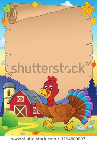 Esecuzione Turchia uccello pergamena carta foglia Foto d'archivio © clairev
