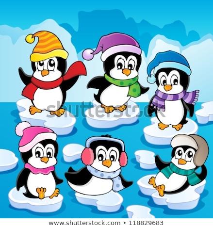 Pingvin tél ruházat művészet madár ruházat Stock fotó © clairev