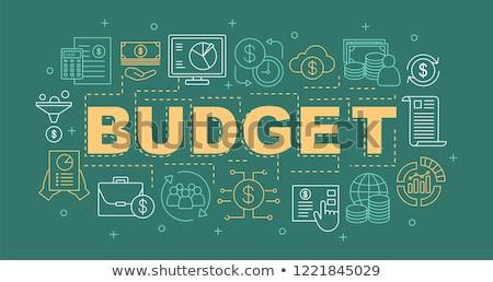 Budget planning banner financiële analist Stockfoto © RAStudio