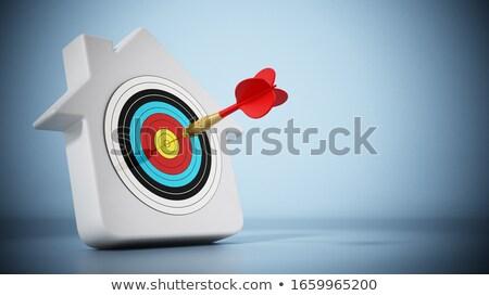 A bull's eye for investment. Stock photo © limbi007