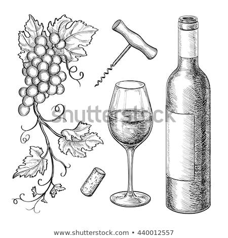 白ワイン · 眼鏡 · ボトル · コークスクリュー · 孤立した · 白 - ストックフォト © furmanphoto