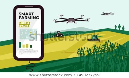 Agrícola dispositivo vetor campo Foto stock © robuart