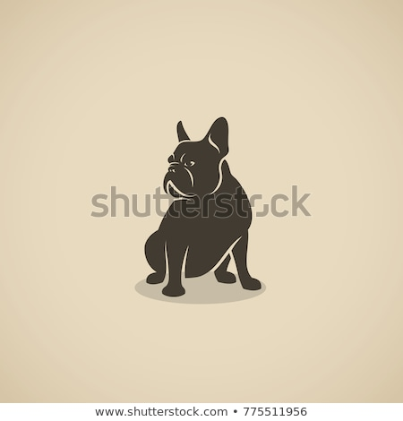 side view of a french bulldog sitting Stock photo © feedough