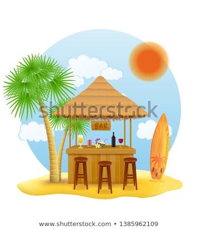 verano · salón · palmera · isla · tropical · ilustración · vector - foto stock © konturvid