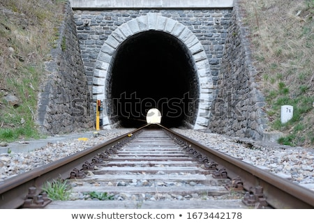A train at the tunnel Stock photo © bluering