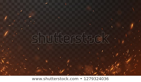 Flame and Spark, Bonfire or Burning Wood Vector Stock photo © robuart