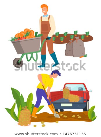 farmer using carriage to transport vegetables stock photo © robuart