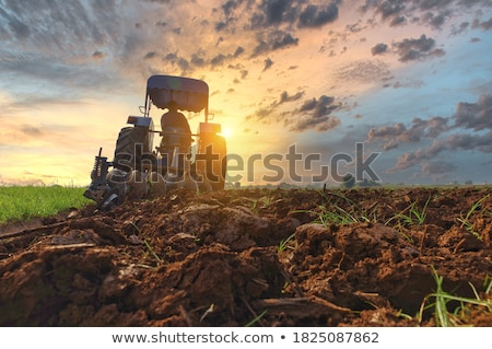 農家 運転 トラクター フィールド シーズン ストックフォト © robuart