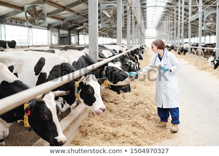 Fiatal női gondozó nagy megérint egy Stock fotó © pressmaster