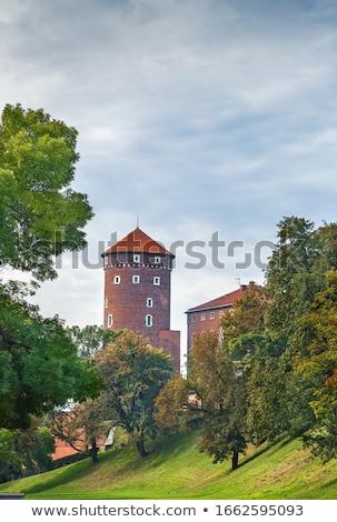 Sandomierz Tower, Krakow, Poland Stock photo © borisb17